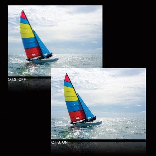 Panasonic Lumix G Vario 35 100mm 2
