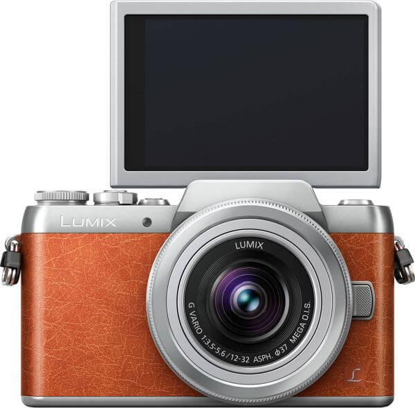 Panasonic Lumix DMC GF8 L 5