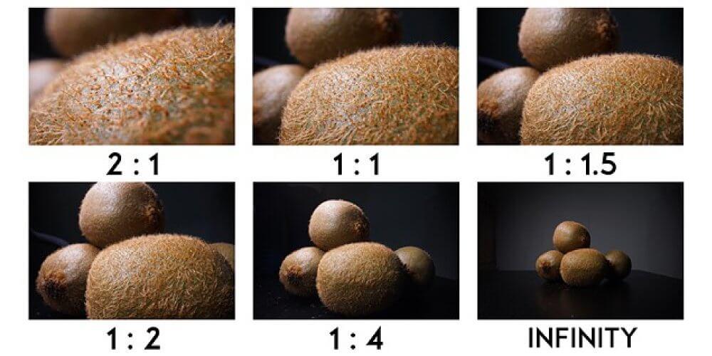 Preview : Laowa 24mm f/14 2x Macro Probe lens มิติใหม่เลนส์ Macro