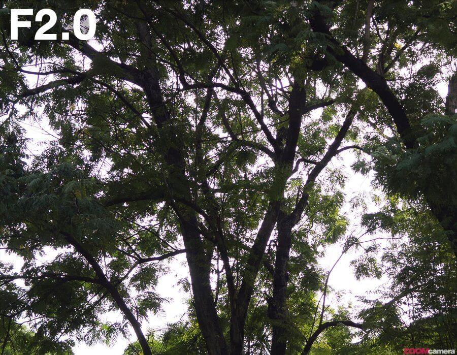 Olympus 17mm F1 2 PRO CA F2