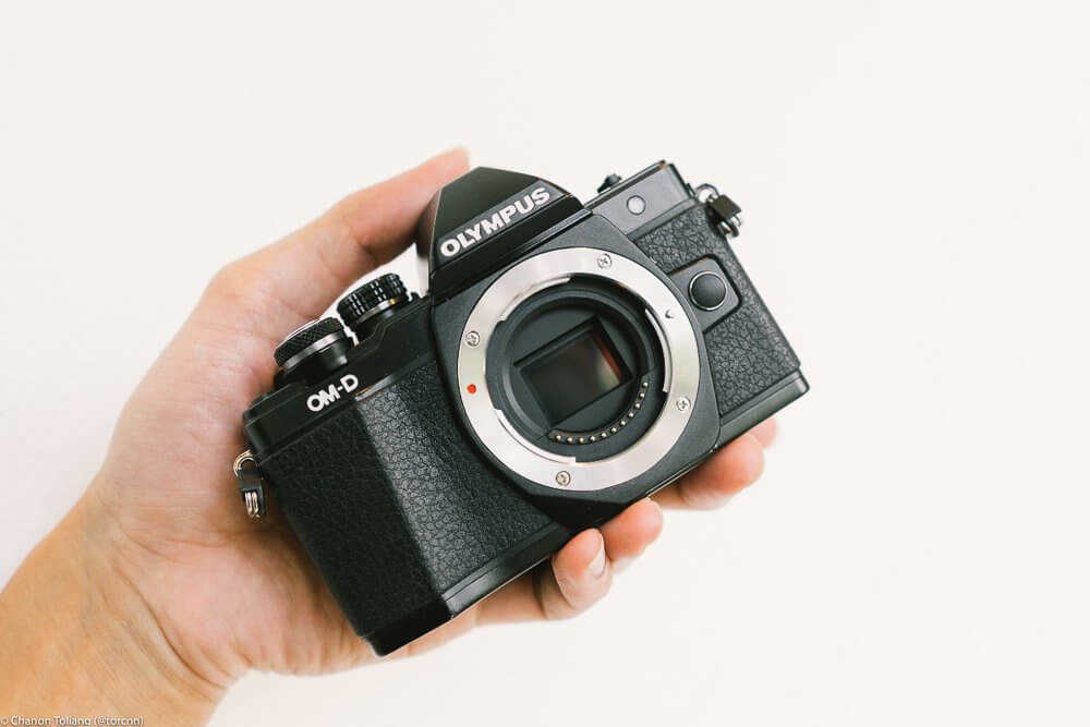 Olympus E M10 II Review 2