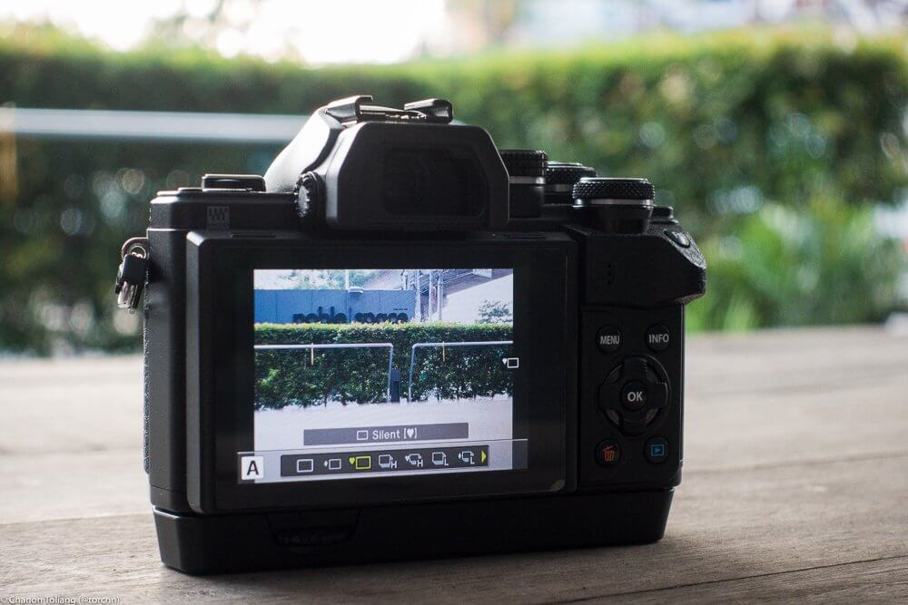 Olympus E M10 II Review 3