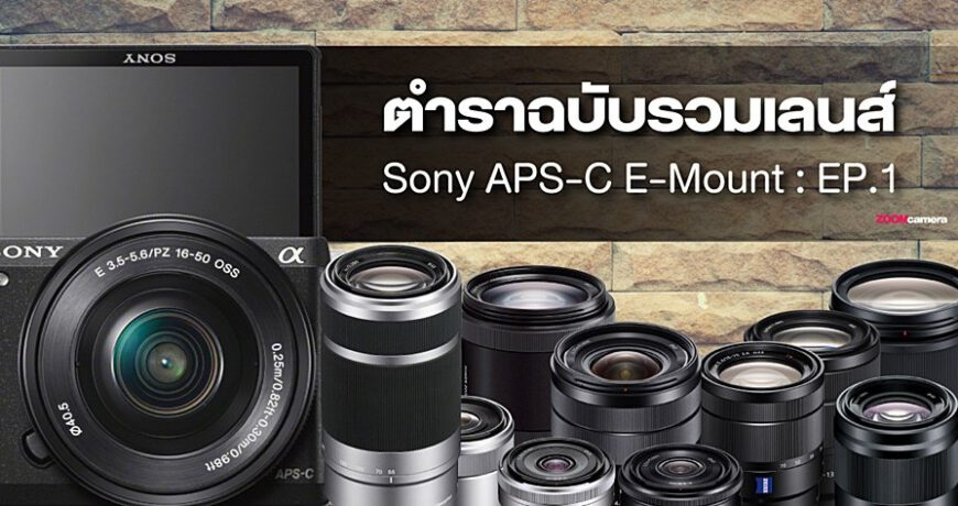 basic guide all lens sony apsc e mount zoomcamera content