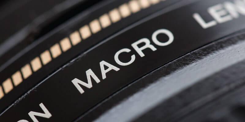 Macro Lover : รวมอุปกรณ์จำเป็น สำหรับการถ่ายภาพ Macro & Closeup
