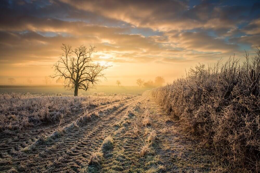 Tips : 5 แนวทาง การถ่ายภาพธรรมชาติให้สวยสมจริง