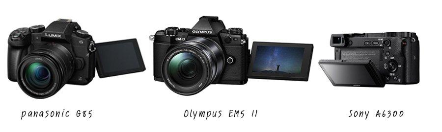 Panasonic G85 Vs Olympus EM5 II Vs Sony A6300 LCD Screen