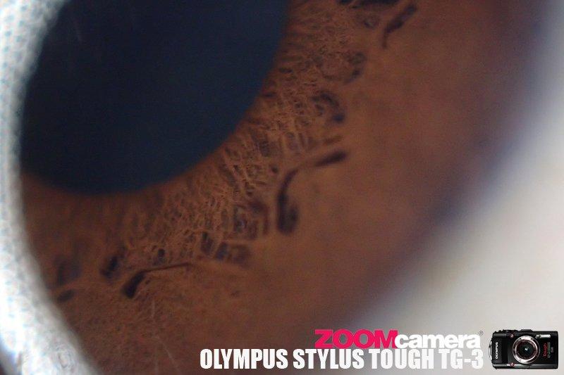 Olympus TG3 Macro Test 22