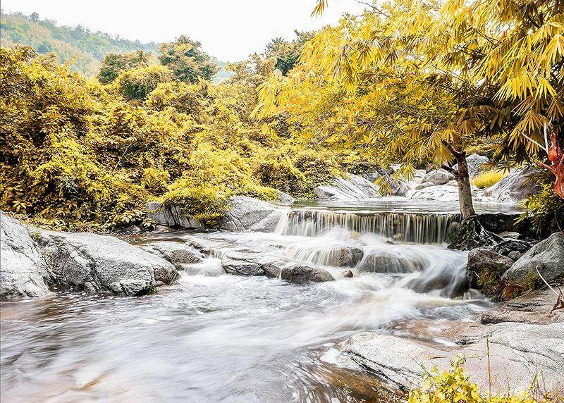 Waterfall Yellow Autumn 2