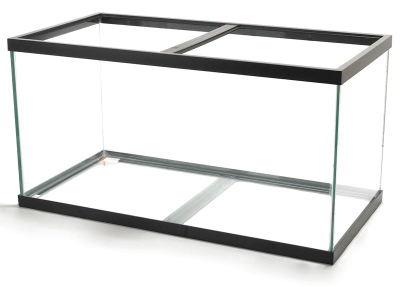 glass aquarium tanks
