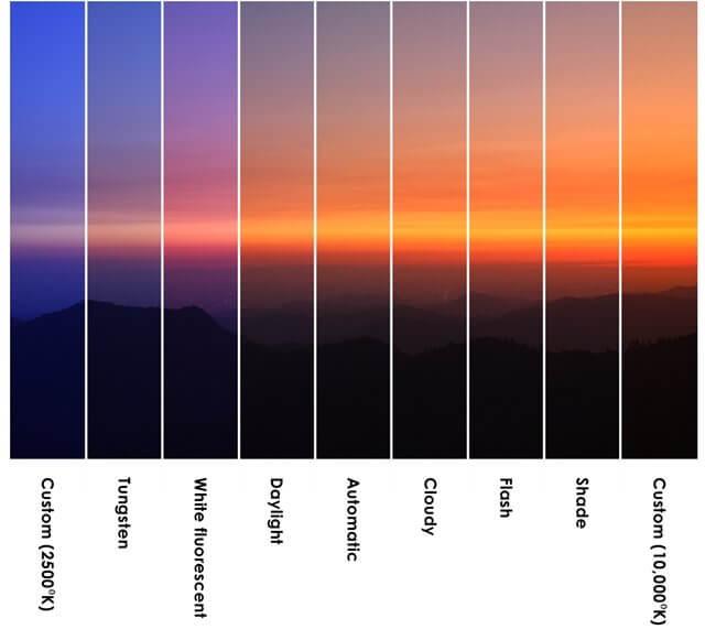 white balance comparison zoomcamera 1