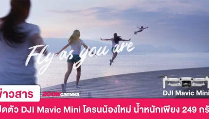DJI Mavic Mini 1