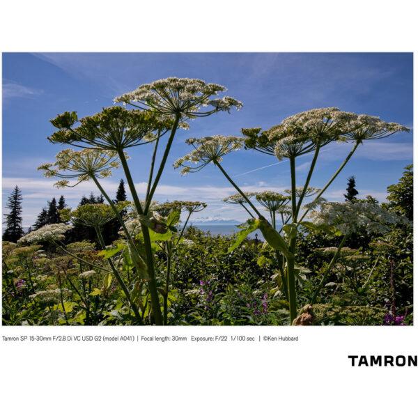 Tamron SP 15 30mm f2.8 Di VC USD G2 Lens 17