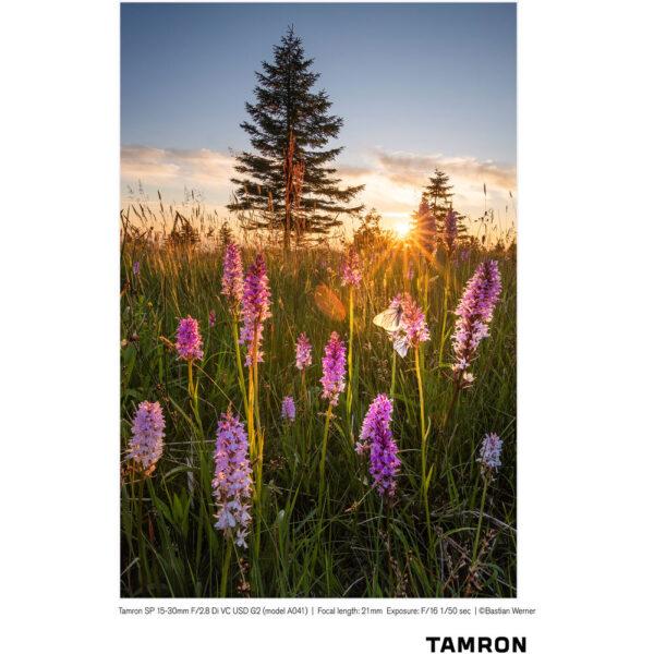 Tamron SP 15 30mm f2.8 Di VC USD G2 Lens 24