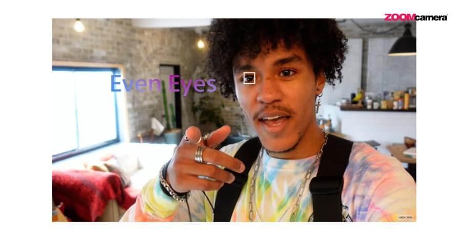 eye af sony zv1