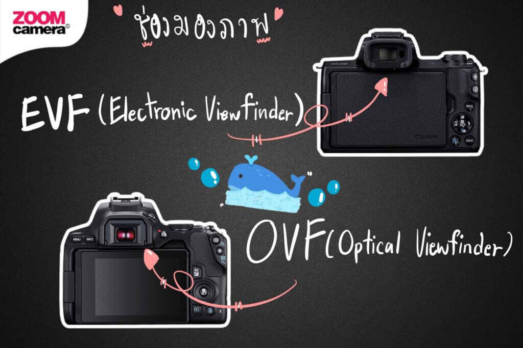 m50 vs 200d ii evf and ovf