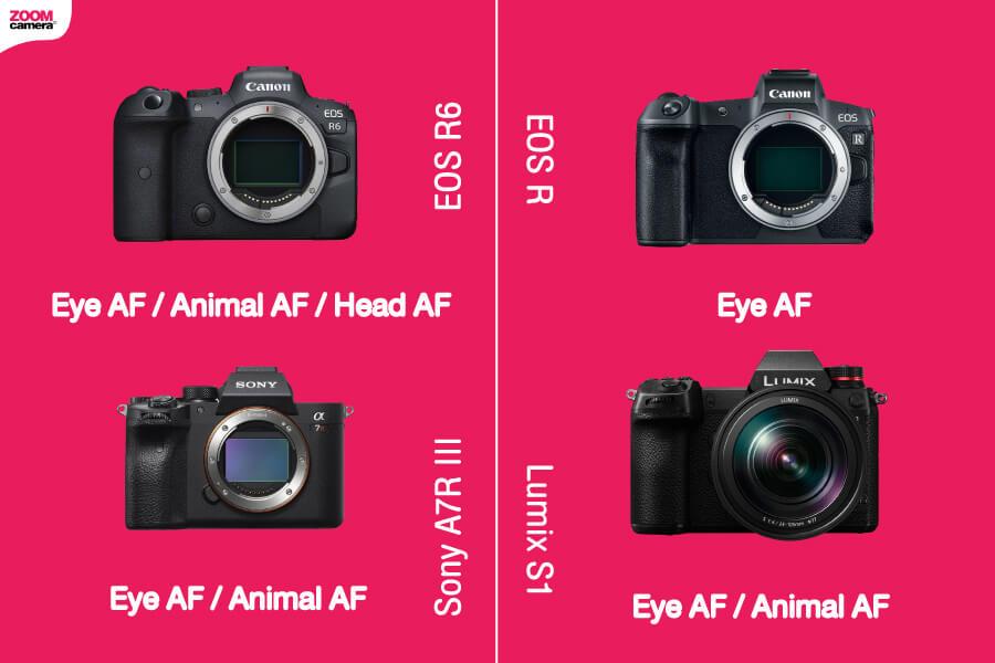 เปรียบเทียบ EOS R6 eye af