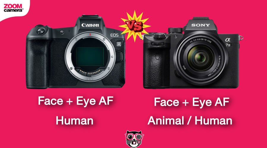 เปรียบเทียบ Canon EOS R vs Sony A7 III ระบบ Eye AF