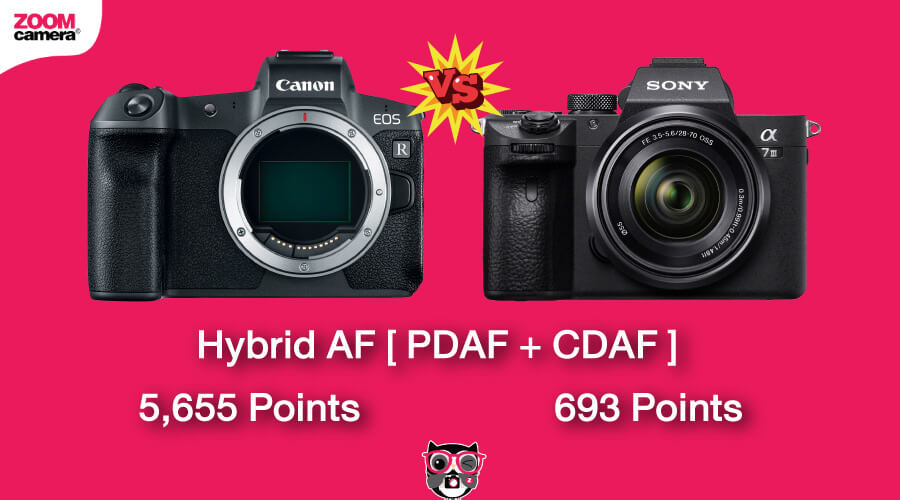 เปรียบเทียบ Canon EOS R vs Sony A7 III ระบบ Focus