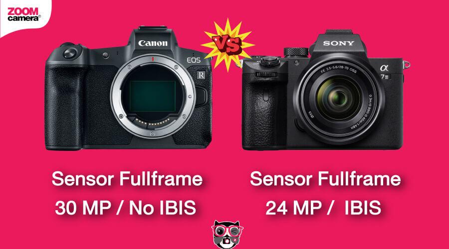เปรียบเทียบ Canon EOS R vs Sony A7 III ขนาด Sensor