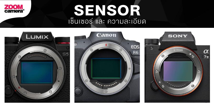 ขนาด Sensor Lumix S5