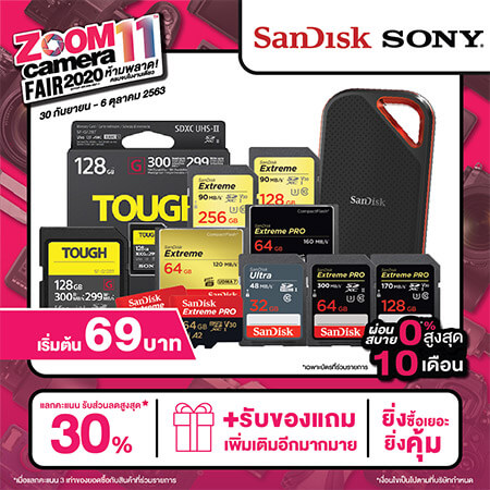 ZoomFair GroupBanner All 20 Memory Cards