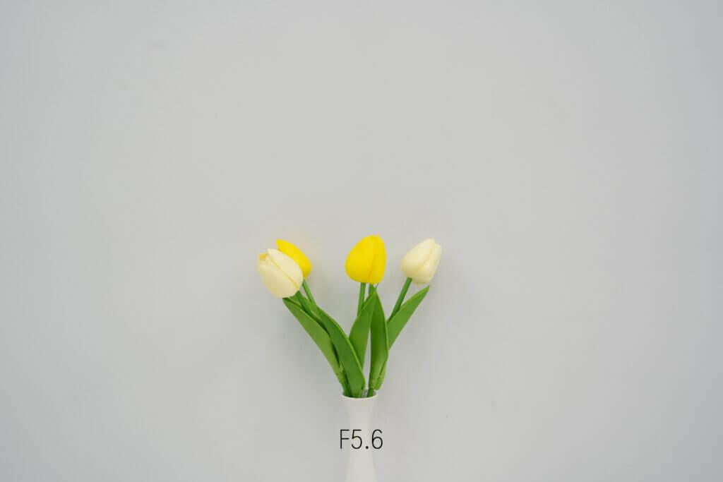 Sony FE 35mm F1.4 GM ISO 100 1 10 sec at f 5.6 vignette