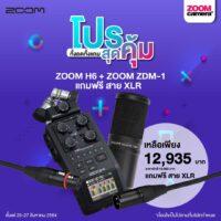 ZOOM H6 + ZOOM ZDM-1